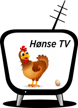 Hønse TV