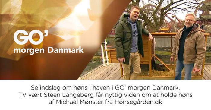GO morgen Danmark høns